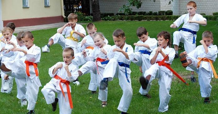 Секции боевых искусств