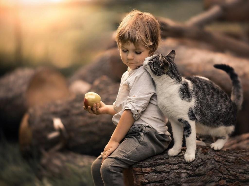 Картинки дети и кошки, смешные поздравления днем